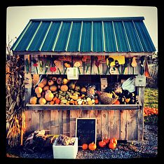 Local Farm Stand